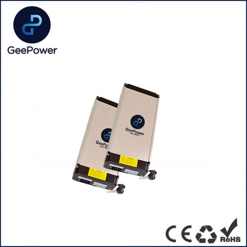 48V Lipo Battery Pack for Electric Bicycle