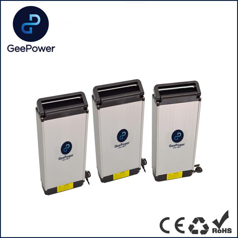 48V 10AH LiFePO4 Battery For Electric Bike